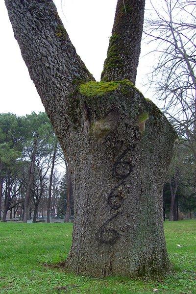 satanic_tree